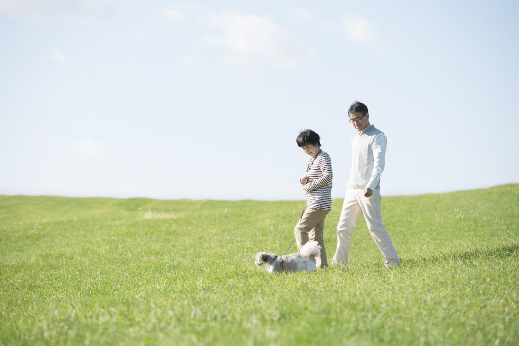 草むらを散歩する中年夫婦
